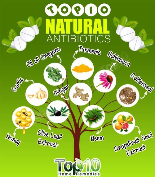 ten natural antibiotics
